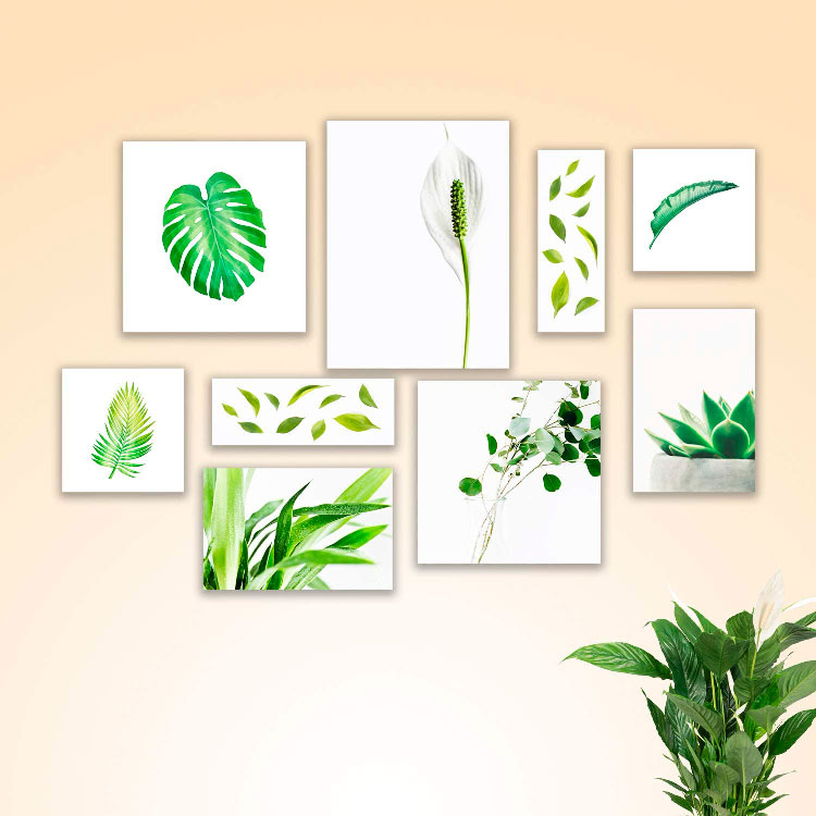 Kit de quadros de plantas para decorar a casa